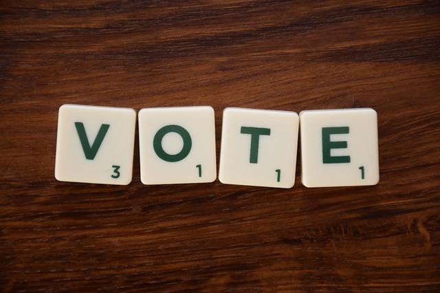 výzva k hlasování